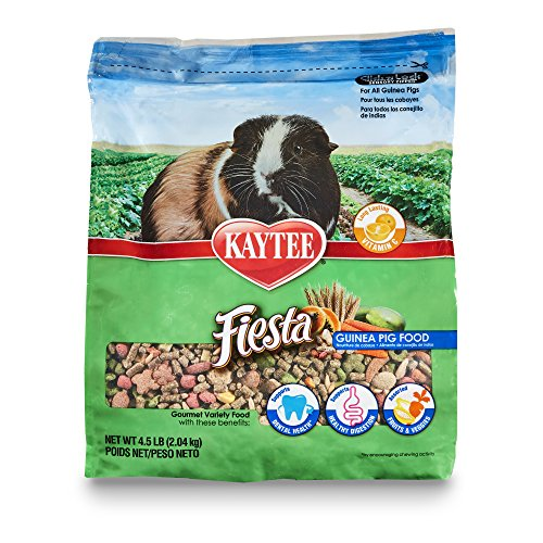 Guinea Pig Diet Pet Food - Kaytee Fiesta Guinea Pig Food 4.5 pounds