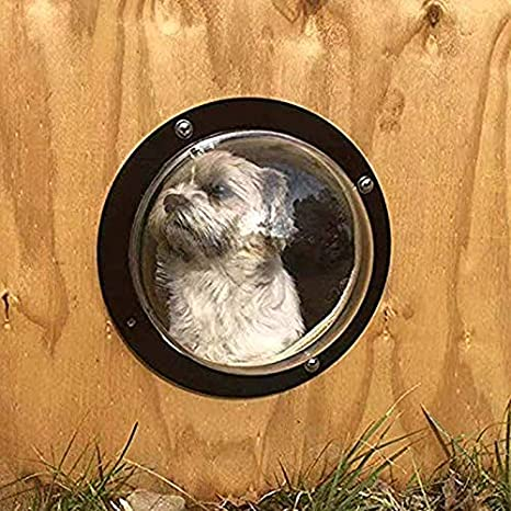 Amazon com : gomaomi Pet Window Fence for Cats and Dogs Peek Clear