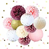 NICROLANDEE Dusty Rose Blush Pink Tissue Pom Poms Rose Gold Foil Dots Paper Lanterns Gold Glitter Party Confetti 50G for Wedding Valentine's Day Bridal Shower Baby Shower Birthday Party Decorations