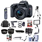 Canon EOS Rebel SL2 DSLR with EF-S 18-55mm f/4-5.6 IS STM Lens - Black - Bundle w/64GB SDXC Card, Camera Case, Video Light, Shotgun Mic, Filter Kit, Tripod, Shutter Release, Software Package, More