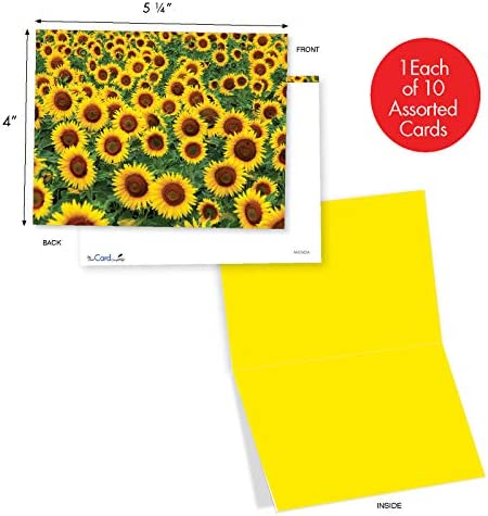 Original hand painted notecards 4x6 Mother/'s Day Gift Assorted Sunflower Notecards Set of 3 Sunflower Watercolor Notecard Set