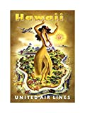 TRAVEL HAWAII UNITED AIRLINE TROPICAL VINTAGE ADVERT ART FRAMED ART PRINT PICTURE & MOUNT F12X1381