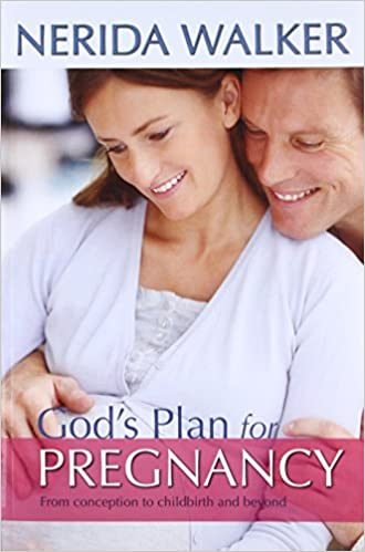 The getting pregnant plan book