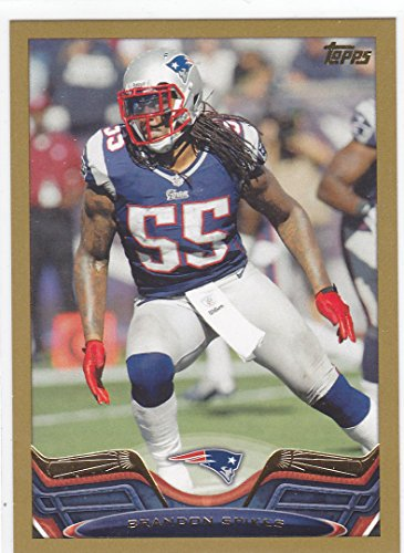 2013 TOPPS BRANDON SPIKES GOLD BORDER - Border Spike
