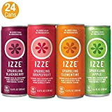 IZZE Sparkling Juice, 4 Flavor Variety Pack, Pack of 24, 8.4 oz Cans