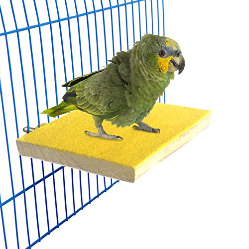 - Bwogue Colorful Bird Perch Stand Platform,Natural Wood Paw Grinding Bird Cage Perch for Parrot Parakeet Hamster Gerbil Cages Toy