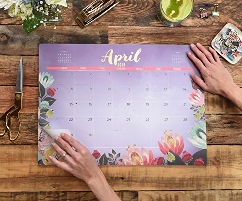 Orange Circle Studio 2018 Decorative Desk Blotter Calendar