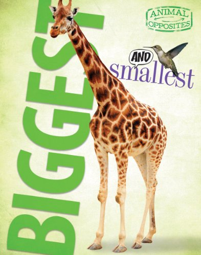 Biggest and Smallest (Animal Opposites) ()