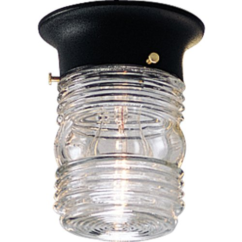 Progress Lighting P5603-31 Powder-Coated Finish Clear Marine Glass, Black