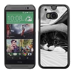 Be Good Phone Accessory // Dura Cáscara cubierta Protectora Caso Carcasa Funda de Protección para HTC One M8 // Cute Cat