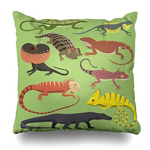 (SPXUBZ Lizard Cartoon Gecko Monster Cotton Throw Pillow Cover Home Decor Nice Gift Indoor Pillowcase Standar Size (Two Sides) )