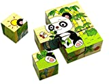 Qiaolinglong 9 Piece Colorful Wooden Block Picture Puzzle For Toddlers And Small Children (Animal Theme)