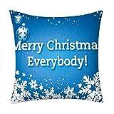 Pgojuni Blue Sky Pillowcase Merry Christmas Pillow Case Polyester Sofa Car Cushion Cover Home Decor Cover Pillow Case1pc (45cm X 45cm) (C)