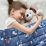 TEMPCORE Weighted Blanket for Kids 7lbs, Toddler