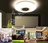 15-inch Dimmable LED Music Ceiling Lamp with