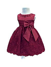 Toddler Baby Girls Embroidered Christing Pageant Birthday Party Dress
