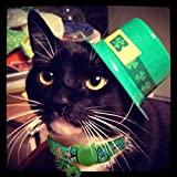 BoomBone St Patricks Day Cat Collar with Bell and