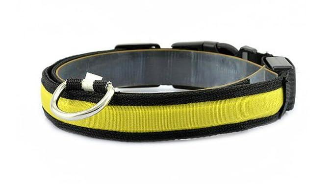 Da. WA mascota Nylon correa cuerda cinturón LED intermitente perro ...