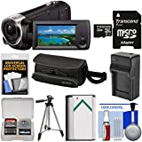 Sony Handycam HDR-CX440 8GB Wi-Fi 1080p HD Video Camera Camcorder 32GB Card + Case + Battery & Charger + Tripod + Kit