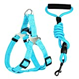 Star Picker Dog Leash Set Adjustable Harness with Climbing Rope Pet Lead and Padded Handle for Small Medium Large Dog Training Walking Running, Blue L(21.5''-31.5'' chest)