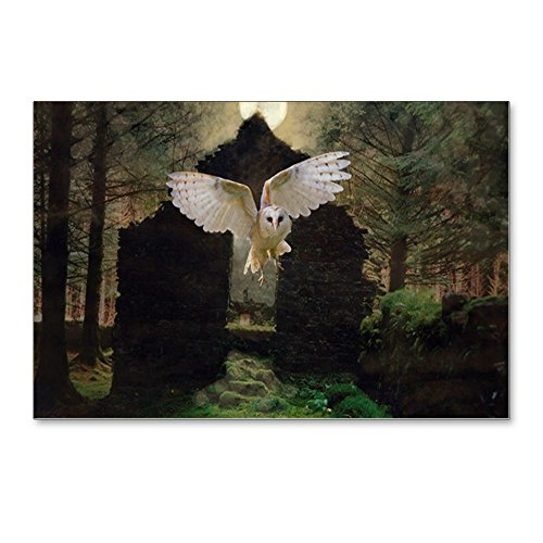 CafePress - Abandoned - Postcards (Package of 8), 6