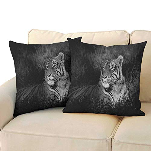 RenteriaDecor Black and White,Travel Pillow Case Bengal Tiger Lying in The Grass Africa Savannah Monochrome Image Print 16