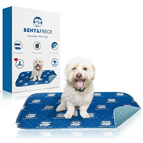 Washable Potty Pads Reusable Pee Pads Perfect for Dogs and Puppies by Bent&Freck - 28x32 Inches -  Great for House Training Your Puppy - Great for Pet Beds