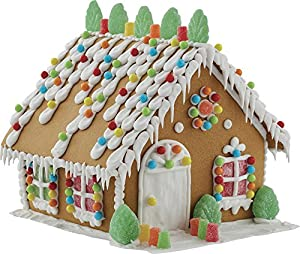 Amazon wilton build it yourself gingerbread house decorating wilton build it yourself gingerbread house decorating kit solutioingenieria Images