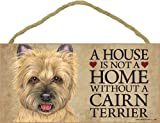 A house is not a home without Cairn Terrier (Tan) - 5