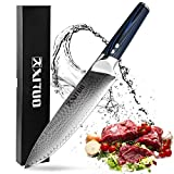 XITUO 8-inch Chef Knife Japanese VG 10 High Carbon Damascus Stainless Steel Kitchen Knife with Ergonomic Micarta Handle and Razor Sharp Blade For Dealing Meat, Fruits and Vegetables