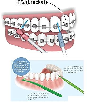Amazon.com: Cleanpik L formas Limpieza Interdental Cepillo Interdental 0.8 MM Dental Cepillos Cepillo Oral Care cepillo de Dientes De: Health & Personal ...