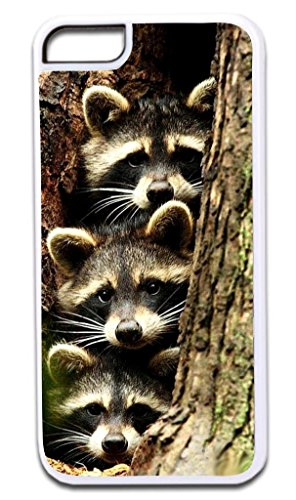 Baby Racoons- © Hard White Plastic Case for the Apple iPhone 6, 6s Universal (Not Compatible with the iPhone 6+ or 6s+) Made in the U.S.A.