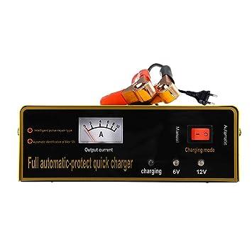 likeitwell 6V/12V Cargador de batería de Coche, Universal ...