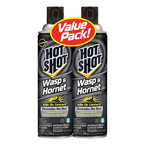 Hot Shot Wasp & Hornet Killer, Aerosol, 2/14-Ounce