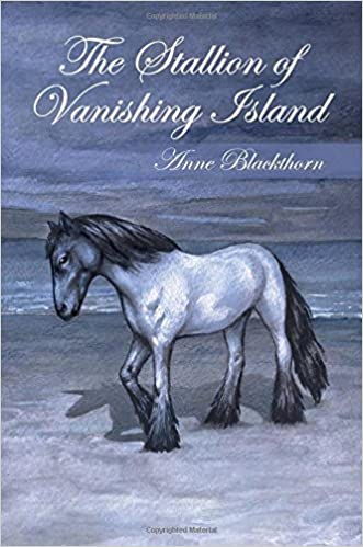 The Stallion of Vanishing Island by Anne Blackthorn (2013-10-15)