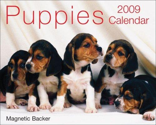 Dog 2009 Mini Calendar - Puppies: 2009 Mini Day-to-Day Calendar
