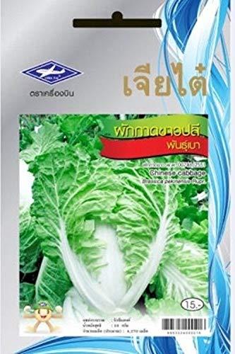 GEOPONICS 5 Paquetes: Paquete de 4270 Semillas/Tailandã©s ...
