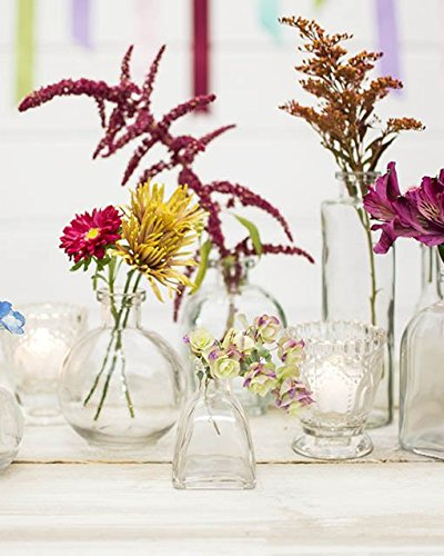 Glass bud vase angular bottle in wide clear