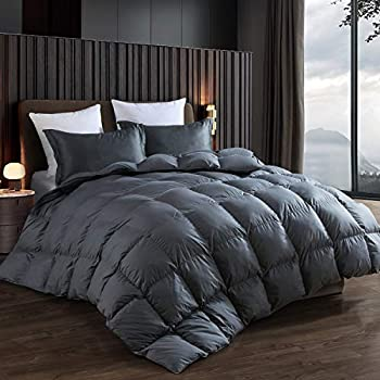 Image of Home and Kitchen Alanzimo Goose Down Comforter Queen Size - All Season - Luxury 100% Cotton Hypoallergenic 1200 Thread Count 700 Fill Power with Tabs Gray