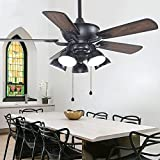 Huston Fan Modern Reversible Indoor Ceiling Fan with 5 Rotatable Light Set