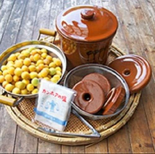 ヤマキイカイ 漬物器 茶