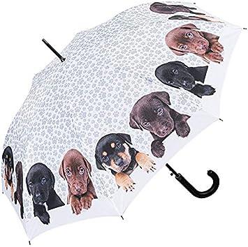 par Fulton. Auto ouvrir /& fermer chien parapluie