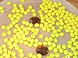 New 250 SMALL YELLOW CORN FISHING BULK BEADS FLOUNDER CARP TROUT RIG BEAD FISH RIGS