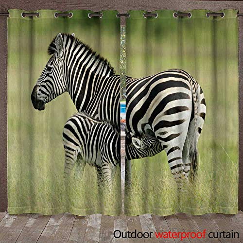 WinfreyDecor Home Patio Outdoor Curtain Plains Zebra with foal W72 x L108 ()