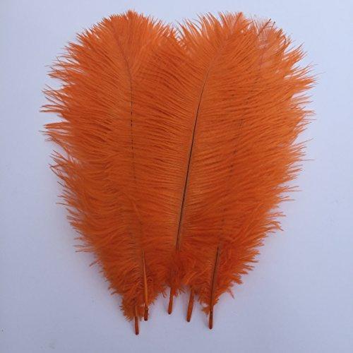 Shekyeon Orange 10-12inch 25-30cm Ostrich Feather Home Decoration DIY Craft Pack of 10