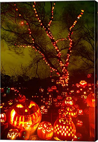 Jack o' Lanterns lit up at Night, Roger Williams Park Zoo, Providence, Rhode Island, USA Canvas Art Wall Picture, Gallery Wrap, 11 x 16 inches -