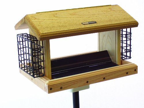 Birds Choice 5 qt. 2-Sided Hopper with Suet Baskets