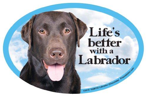 Chocolate Lab Retriever - Prismatix Decal Cat and Dog Magnets, Lab Retriever, Chocolate