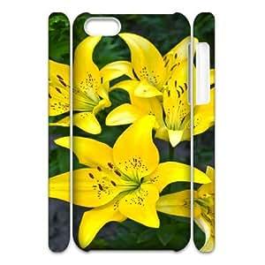 3D Flower 71 IPhone 5C Case, Fashion Case Apple Iphone 5c Case Luxury Okaycosama {White}