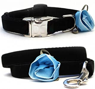 "product image for Diva-Dog 'Carnation Blue' Custom 5/8"" Wide Velvet Dog Collar with Plain or Engraved Buckle, Matching Leash Available"